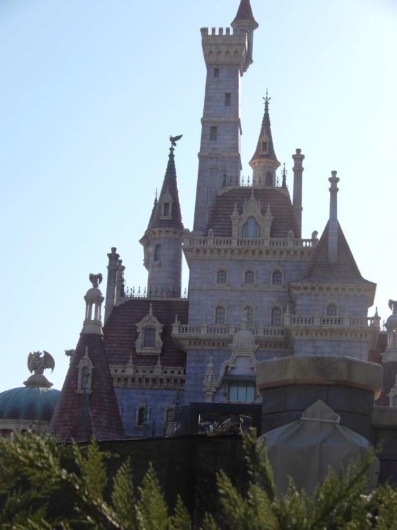 [Tokyo Disneyland] Nouvelles attractions à Toontown, Fantasyland et Tomorrowland (28 septembre 2020)  - Page 8 Dscn8818