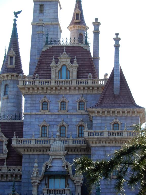 [Tokyo Disneyland] Nouvelles attractions à Toontown, Fantasyland et Tomorrowland (15 avril 2020)  - Page 8 Dscn8820