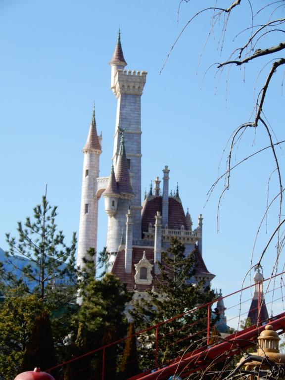 [Tokyo Disneyland] Nouvelles attractions à Toontown, Fantasyland et Tomorrowland (15 avril 2020)  - Page 8 Dscn8821