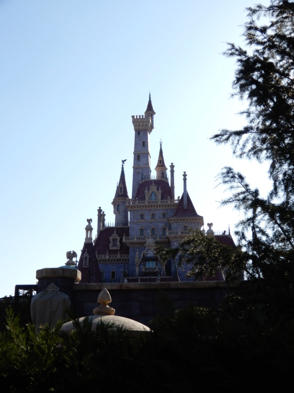 [Tokyo Disneyland] Nouvelles attractions à Toontown, Fantasyland et Tomorrowland (15 avril 2020)  - Page 8 Dscn8822