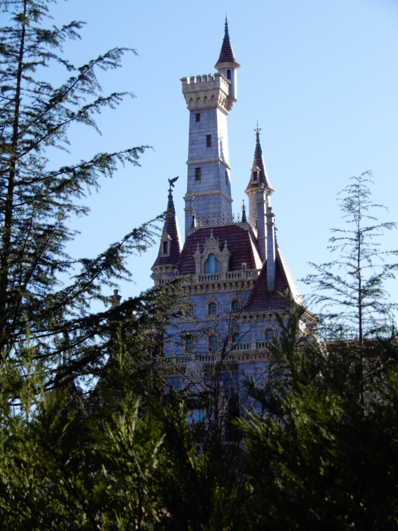 [Tokyo Disneyland] Nouvelles attractions à Toontown, Fantasyland et Tomorrowland (15 avril 2020)  - Page 8 Dscn8823