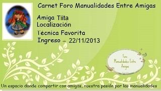 Organizador Tiita10