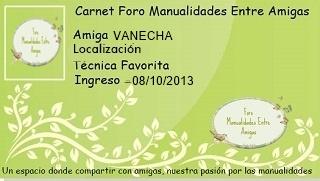 Organizador Vanech10