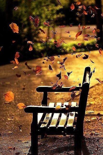 «Осенняя элегия» А.Блок Ca954d10