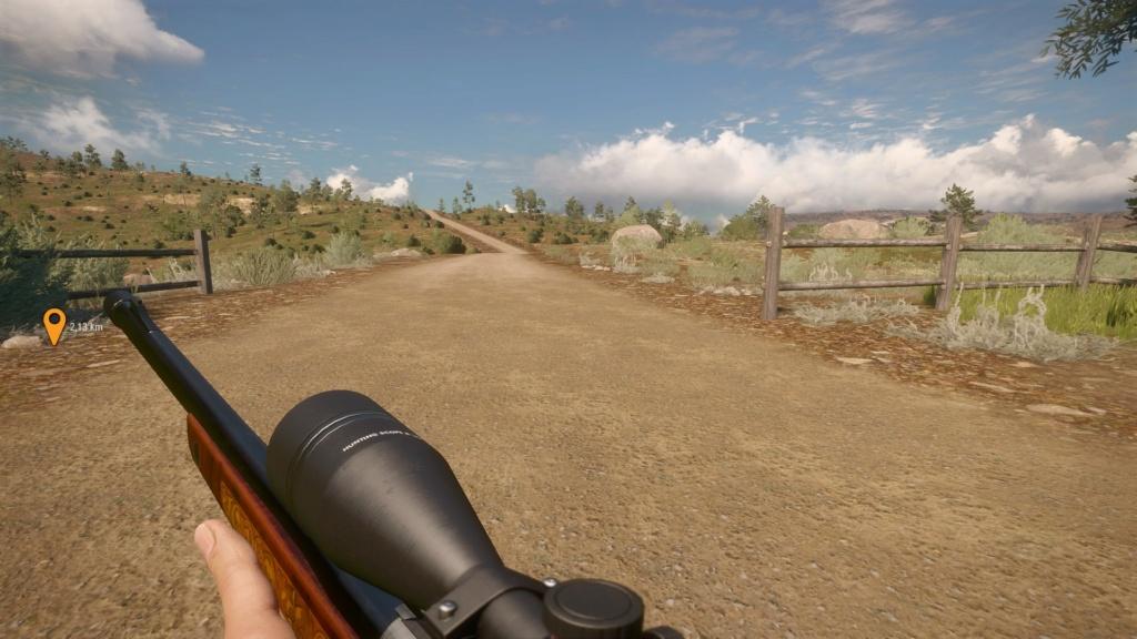 Rifle Rayo  20200112