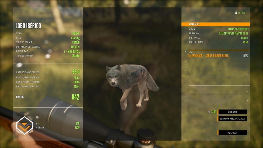 El primer lobo Lobo10