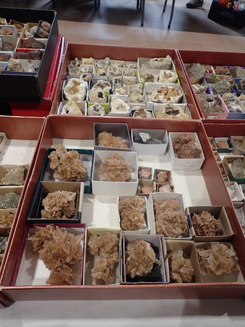minerals - X Taula d'Intercanvi de Minerals de Canyelles P5250024