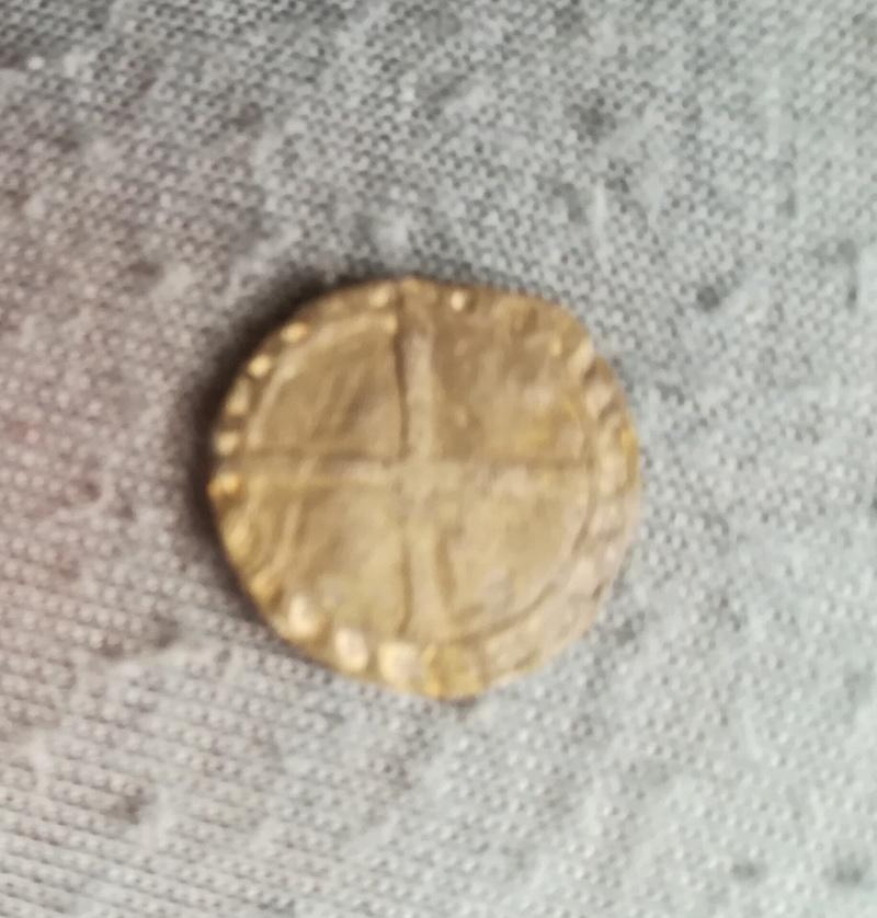 Pellofa a identificar Img_2012