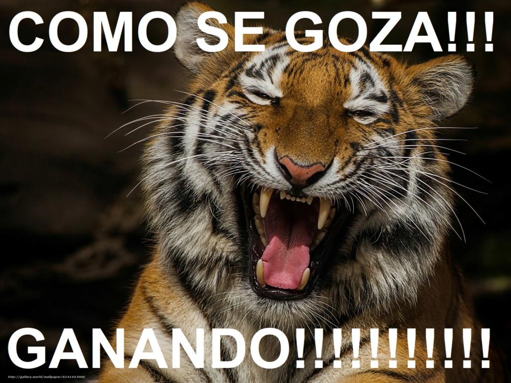 Tigres 5 - 1 Caribes 30/12/18 - Página 3 61414311