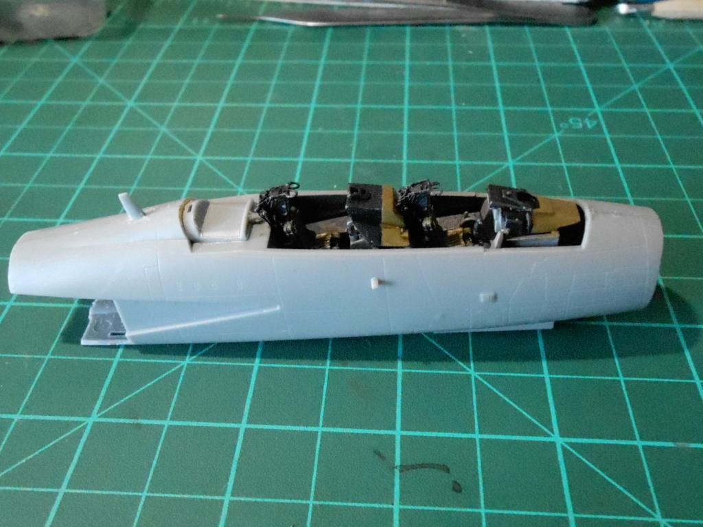 Grumman F-14A Tomcat 1/72 hobby boss Dscn1710
