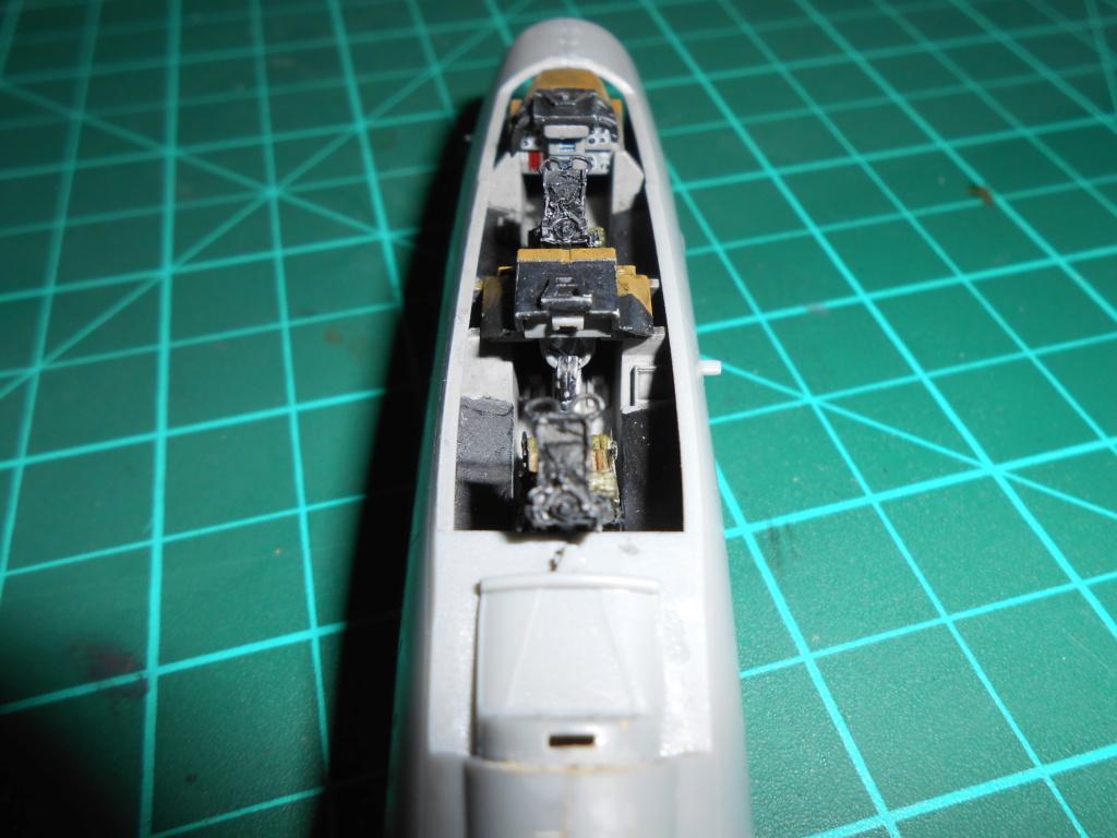 Grumman F-14A Tomcat 1/72 hobby boss Dscn1711