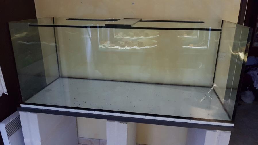 Ajout 60L - 300L - 540L - 1200L dans ma fishroom  20190679