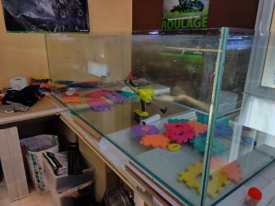 Ajout 60L - 300L - 540L - 1200L dans ma fishroom  Img_2011