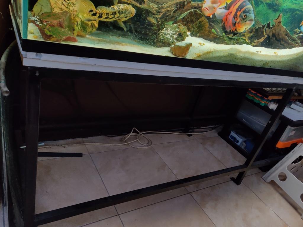 Ajout 60L - 300L - 540L - 1200L dans ma fishroom  Img_2024