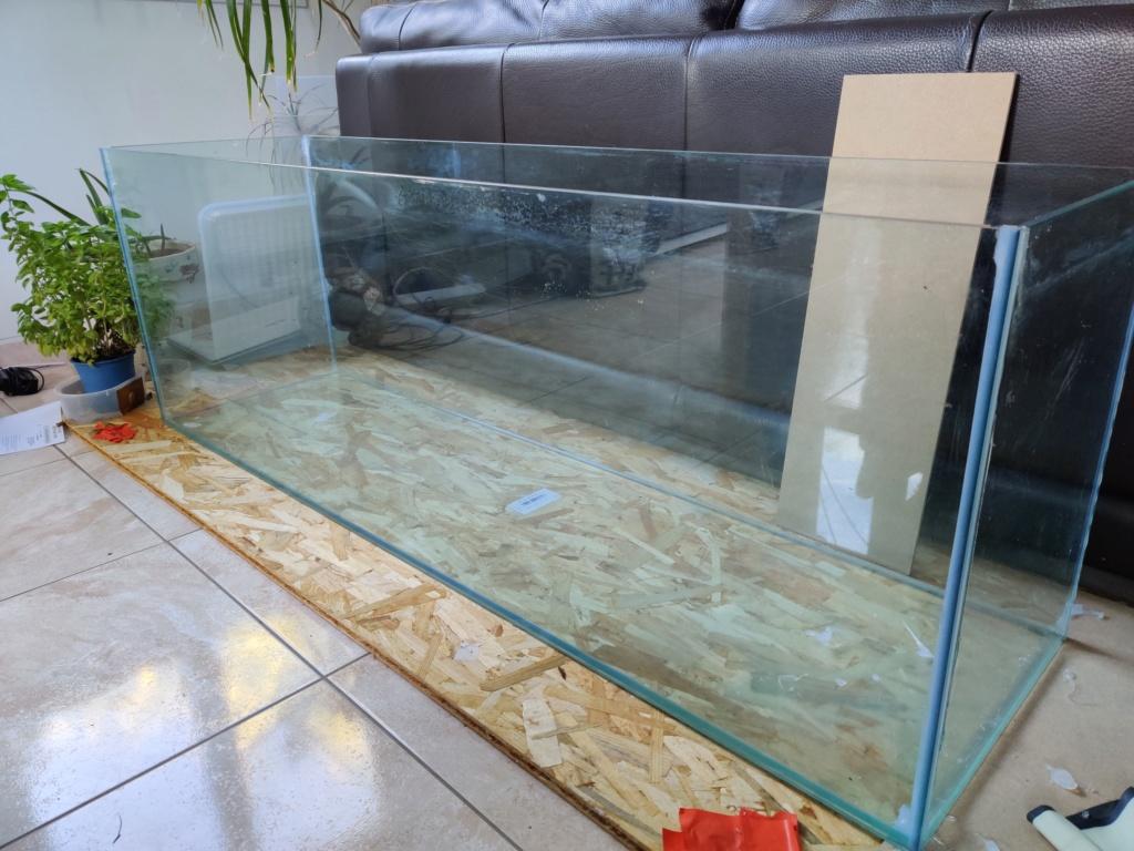 Ajout 60L - 300L - 540L - 1200L dans ma fishroom  Img_2029