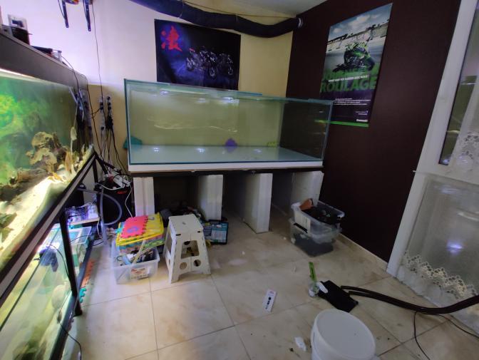 Ajout 60L - 300L - 540L - 1200L dans ma fishroom  - Page 2 Img_2038
