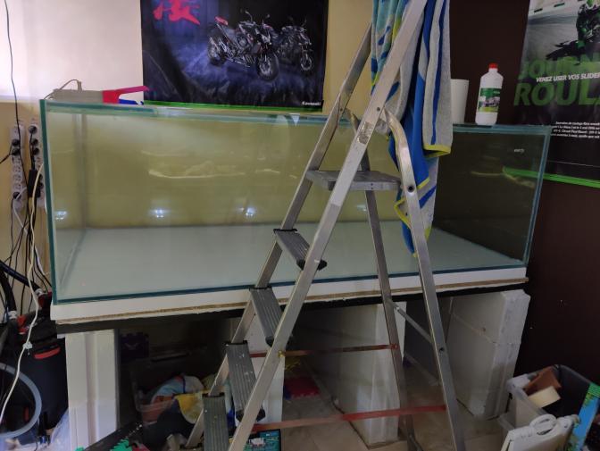 Ajout 60L - 300L - 540L - 1200L dans ma fishroom  - Page 2 Img_2039