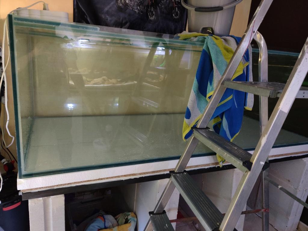 Ajout 60L - 300L - 540L - 1200L dans ma fishroom  - Page 2 Img_2040