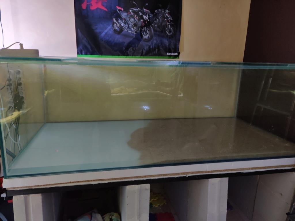 Ajout 60L - 300L - 540L - 1200L dans ma fishroom  - Page 2 Img_2043