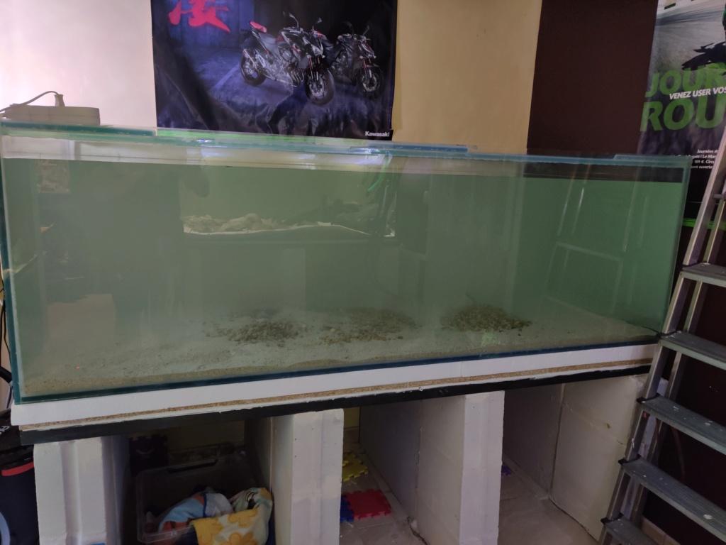 Ajout 60L - 300L - 540L - 1200L dans ma fishroom  - Page 2 Img_2047