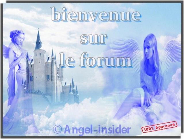 Angel Insider