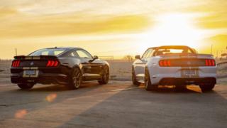 Shelby dévoile la 2019 Shelby GT & GT-H pour Heritage Edition 2019-f11