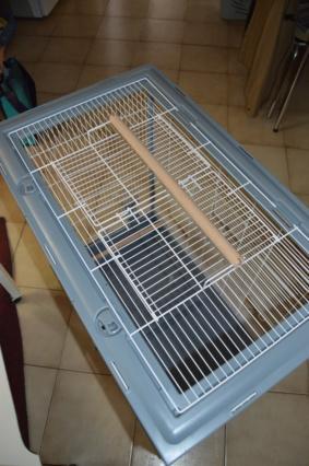 Nouvelle cage... Dsc_0321
