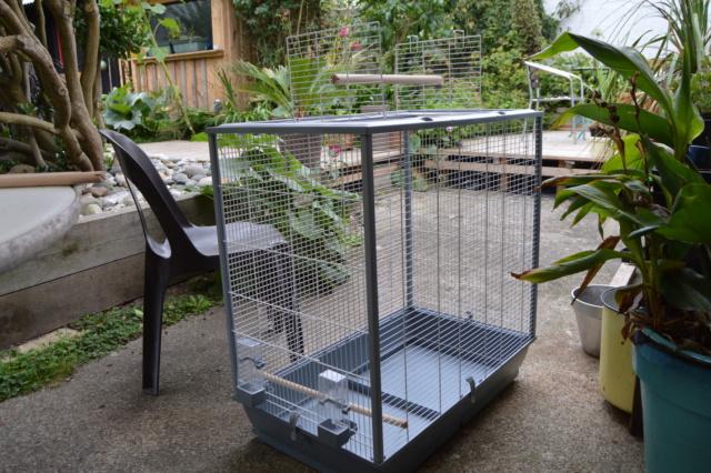 Nouvelle cage... Dsc_0324