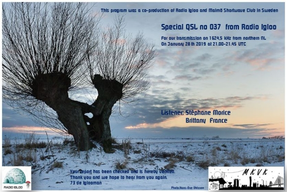 eQSL Speciale N° 24 Igloo Radio Igloo_11
