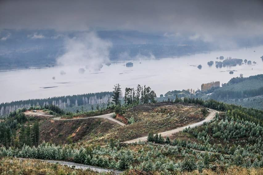 WRC: COPEC Rallye Chile [9-12 Mayo] - Página 2 Fb_img17
