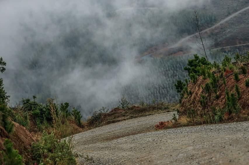 WRC: COPEC Rallye Chile [9-12 Mayo] - Página 2 Fb_img20
