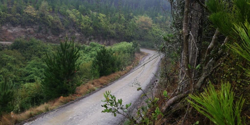 WRC: COPEC Rallye Chile [9-12 Mayo] - Página 2 Img-2020