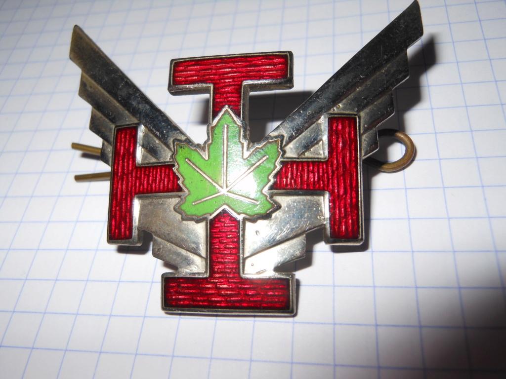 Estimation insigne Commando Raider  Scout_11