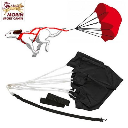 Chiens parachutistes avec dorsal ? Sportc10