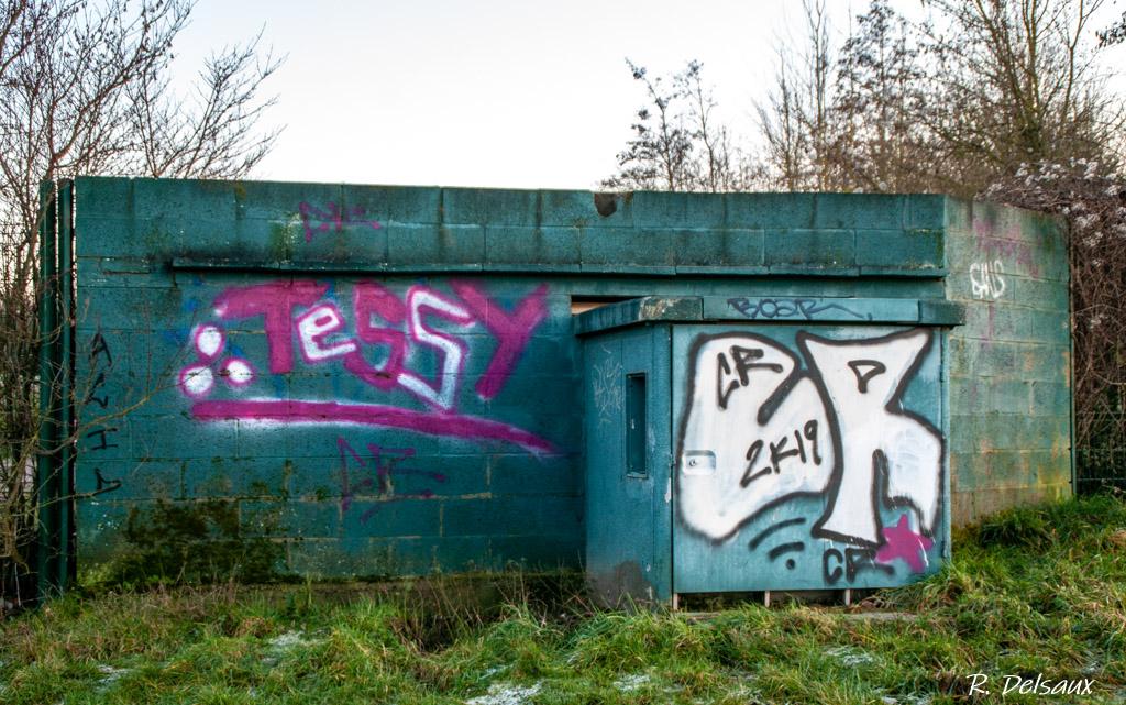 Peintures / Fresques / Tags & art de rue - Page 4 Imgp5012