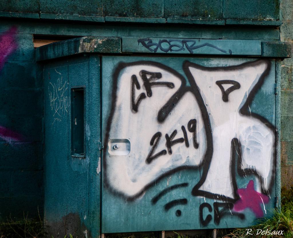 Peintures / Fresques / Tags & art de rue - Page 4 Imgp5013