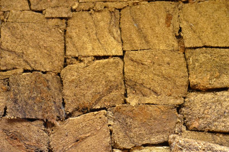 Terrarium 1250x700x900 en bloc de tourbe SOFT 100% naturel - Page 4 Dsc_6617