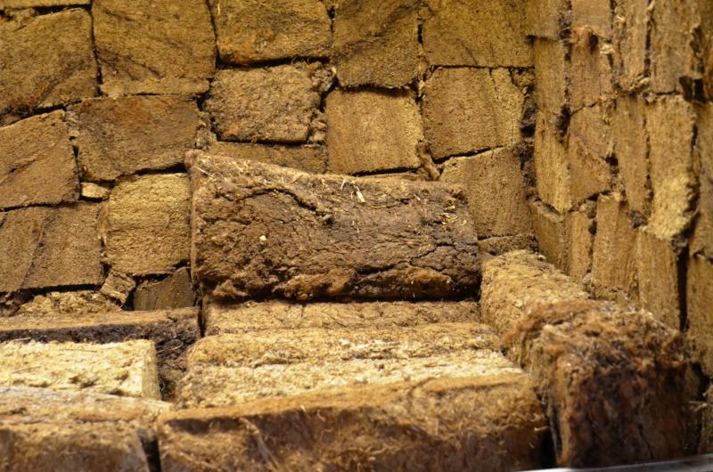 Terrarium 1250x700x900 en bloc de tourbe SOFT 100% naturel - Page 4 Dsc_6620