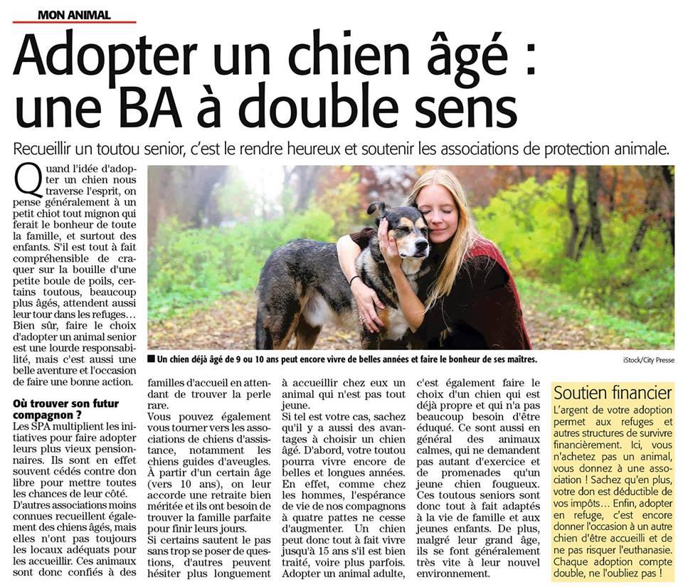 HOPE, née en 2008, croisé labrador parrainée par Nathalie Gamblin- R - VV-SC-SOS-FB - LBC - - Page 3 26169910