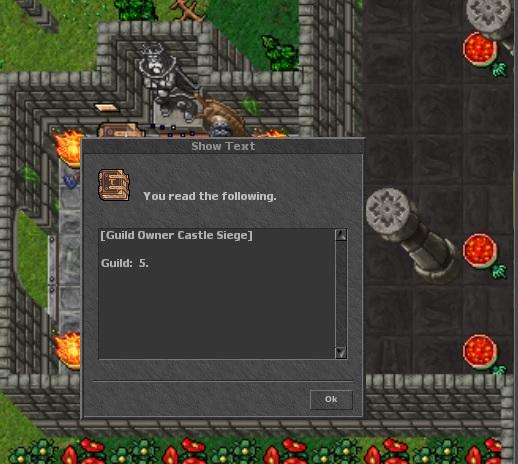 Caste Guild owner Sin_tz11