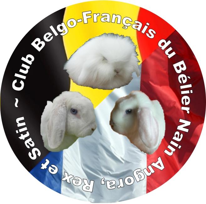 Bonjour de Belgique; Club_b10