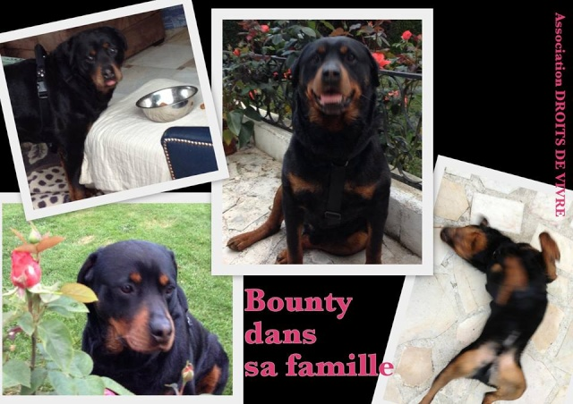 Bounty  M  6 ans - Page 3 10162110