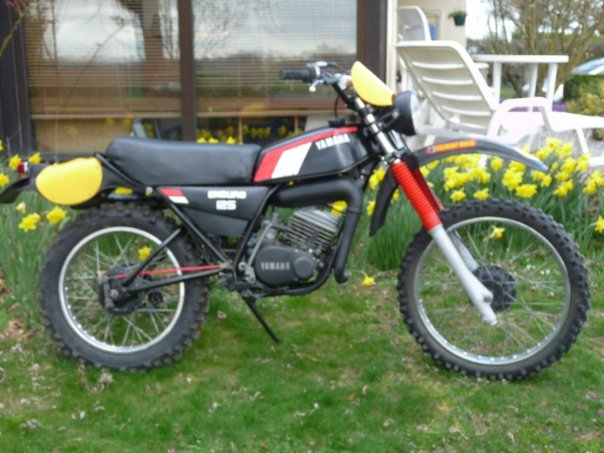 dtmx enduro de 1979 N1268011