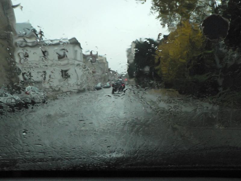 11 novembre sous la pluie P1120710