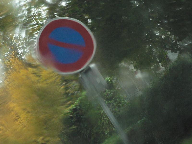 11 novembre sous la pluie P1120714