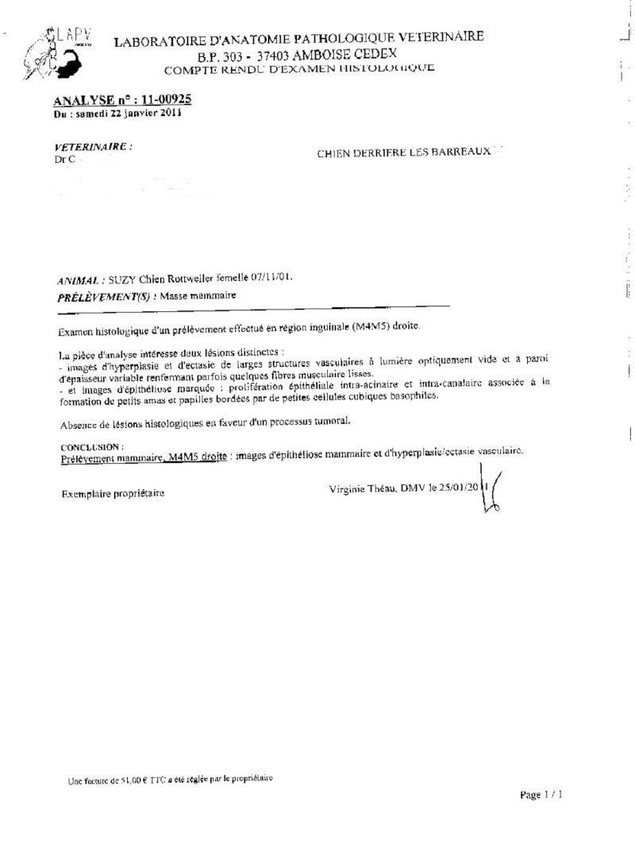 [CLOTURE et REGLE]Urgent/ Appel aux dons pour les soins opératoires de SUZY (27)  Anapat10