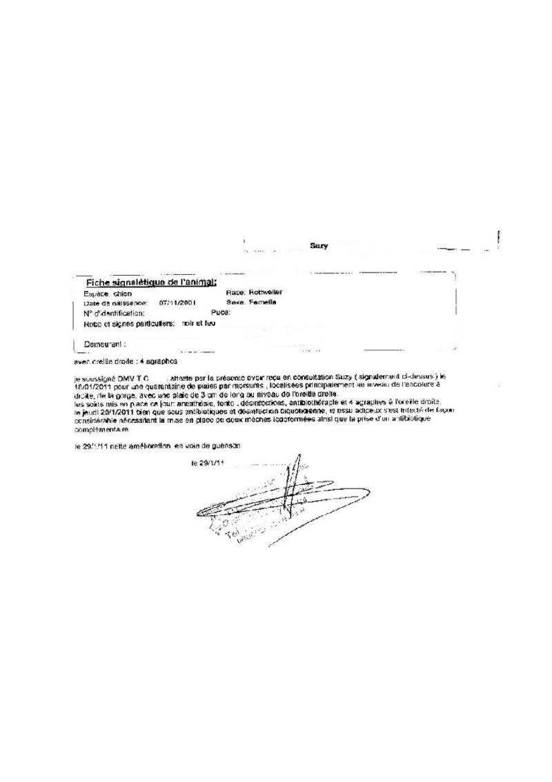 [CLOTURE et REGLE]Urgent/ Appel aux dons pour les soins opératoires de SUZY (27)  Attest10