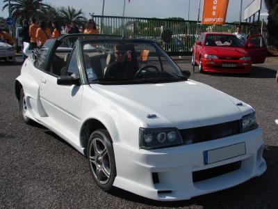 Moise 205 Roland Garros Cabriolet Meetin11