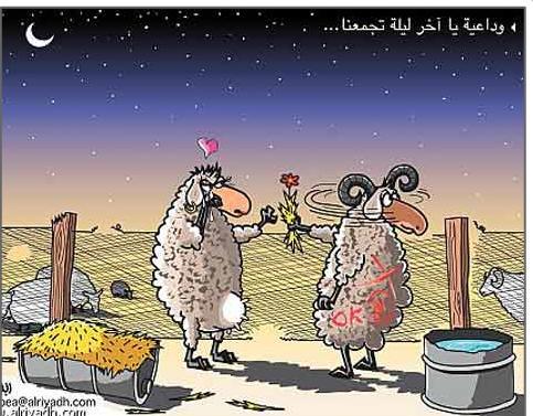 كاريكاتير 12310