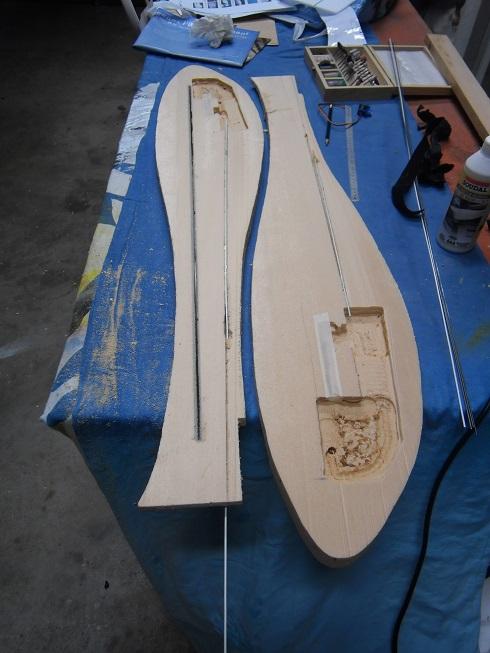 Planeur Fish P9240010